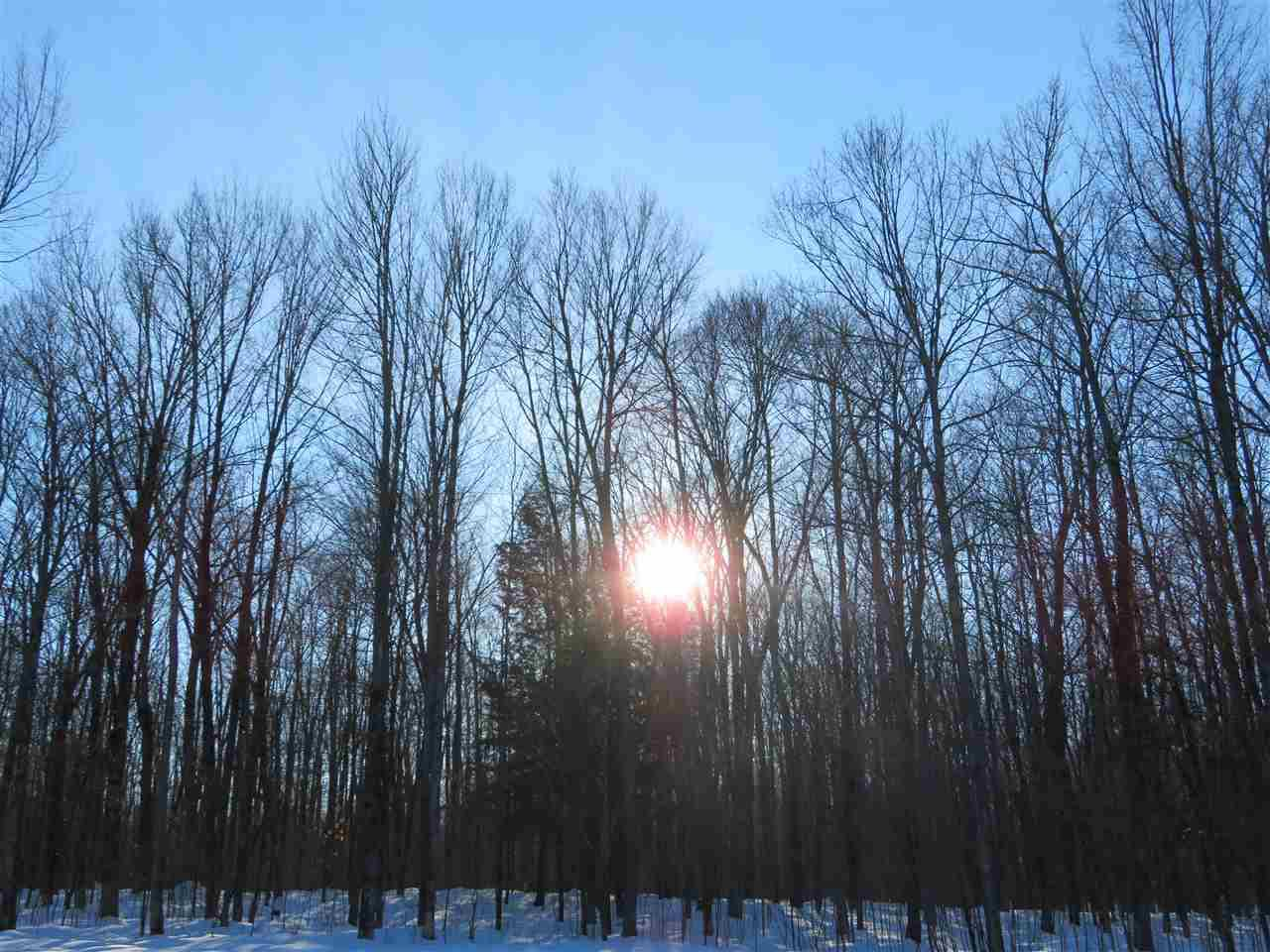 View Vacant Land For Sale at Lot 4 EDWARD DRIVE, Merrill, WI