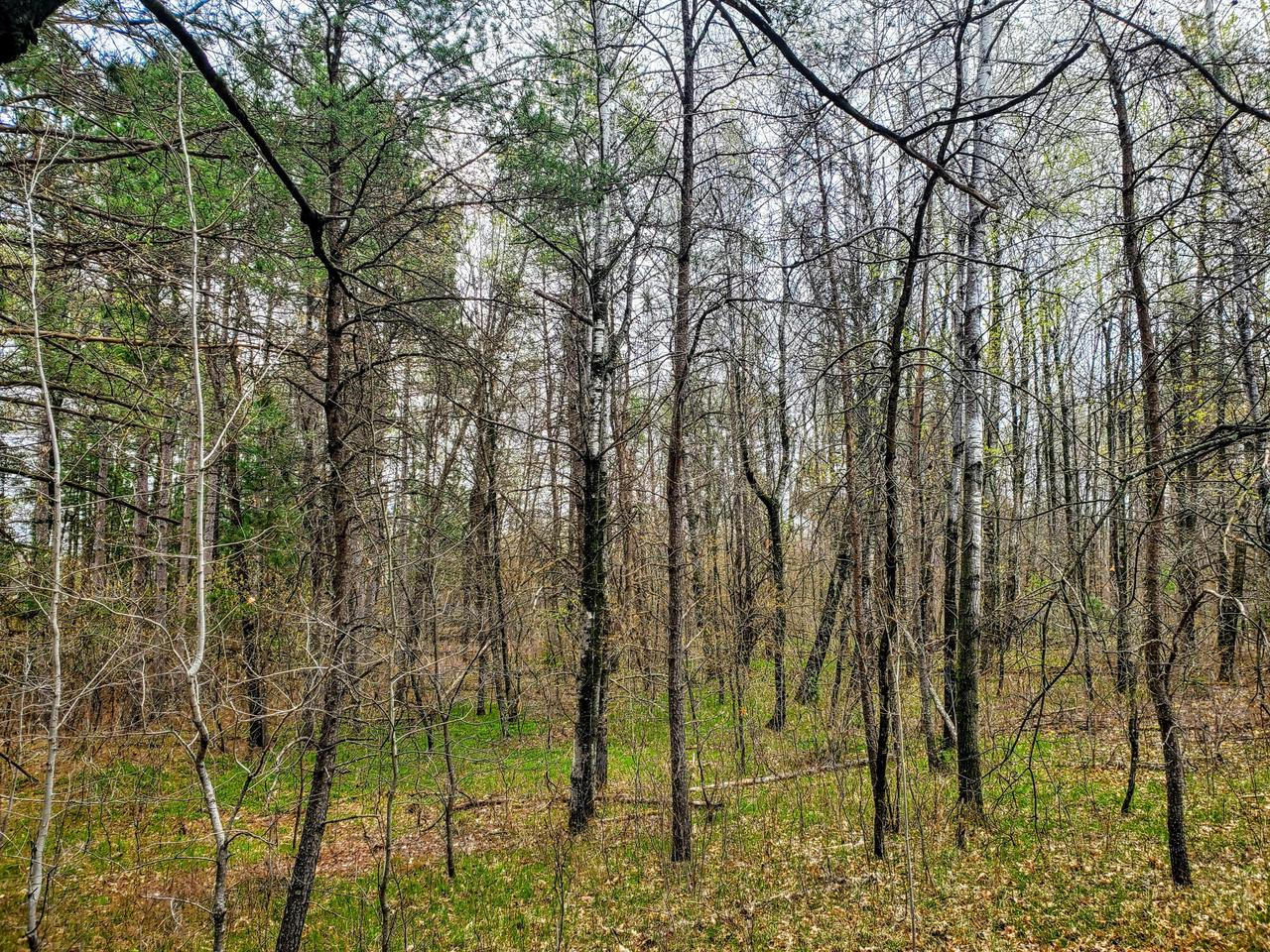 View Vacant Land For Sale at Lt 0 Gene Dr, Crivitz, WI