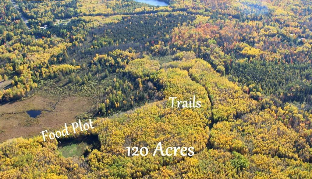 View Vacant Land For Sale at 120 acres Lake of the Falls Road, Mercer, WI