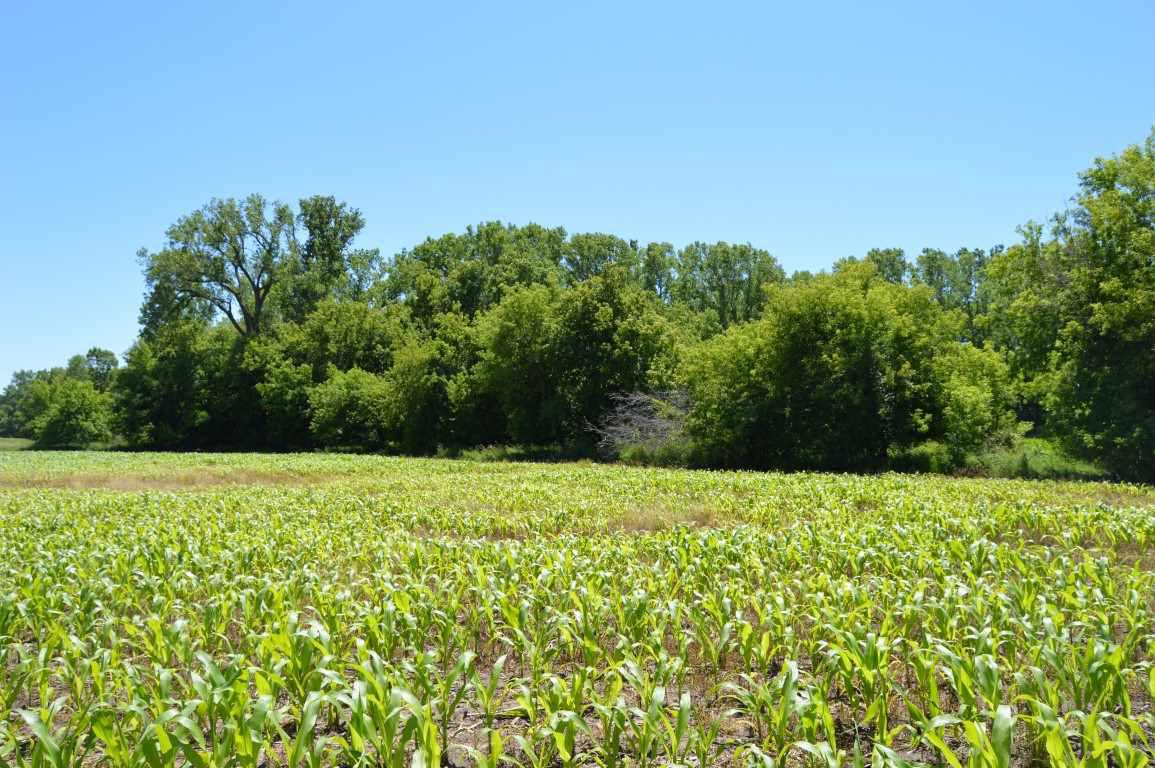 View Vacant Land For Sale at APPLE CREEK ROAD, Appleton, WI