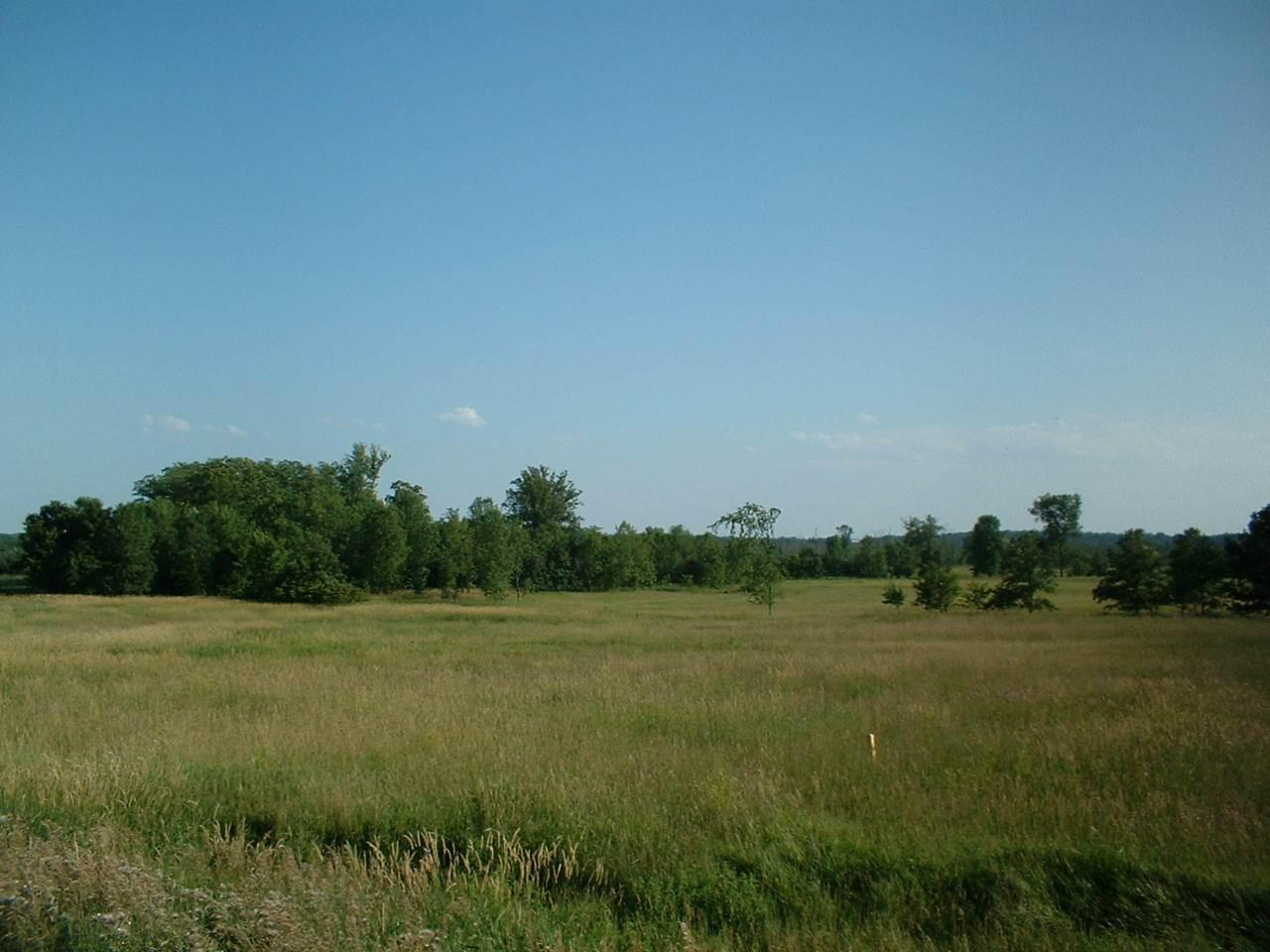 View Vacant Land For Sale at BISON ROAD, Winchester, WI