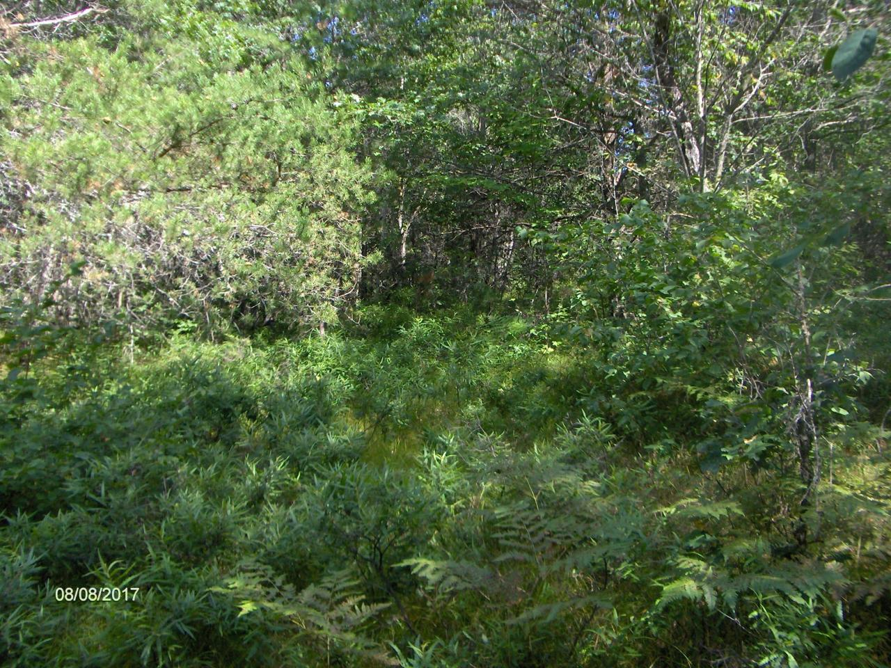View Vacant Land For Sale at Lt  25 Abbey Rd, Crivitz, WI