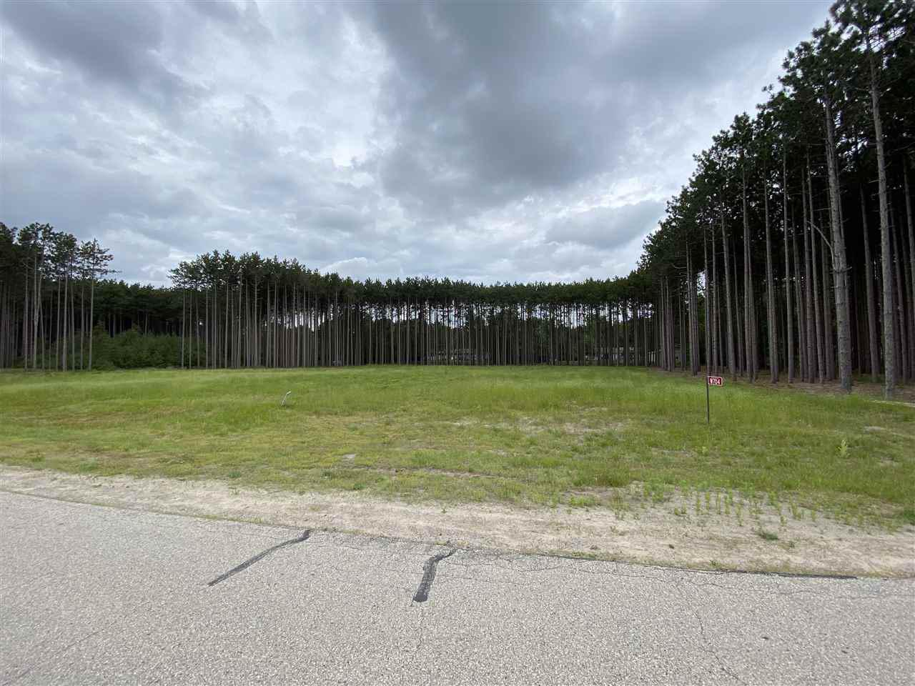 View Vacant Land For Sale at W704 EDWARDS AVENUE, Marinette, WI