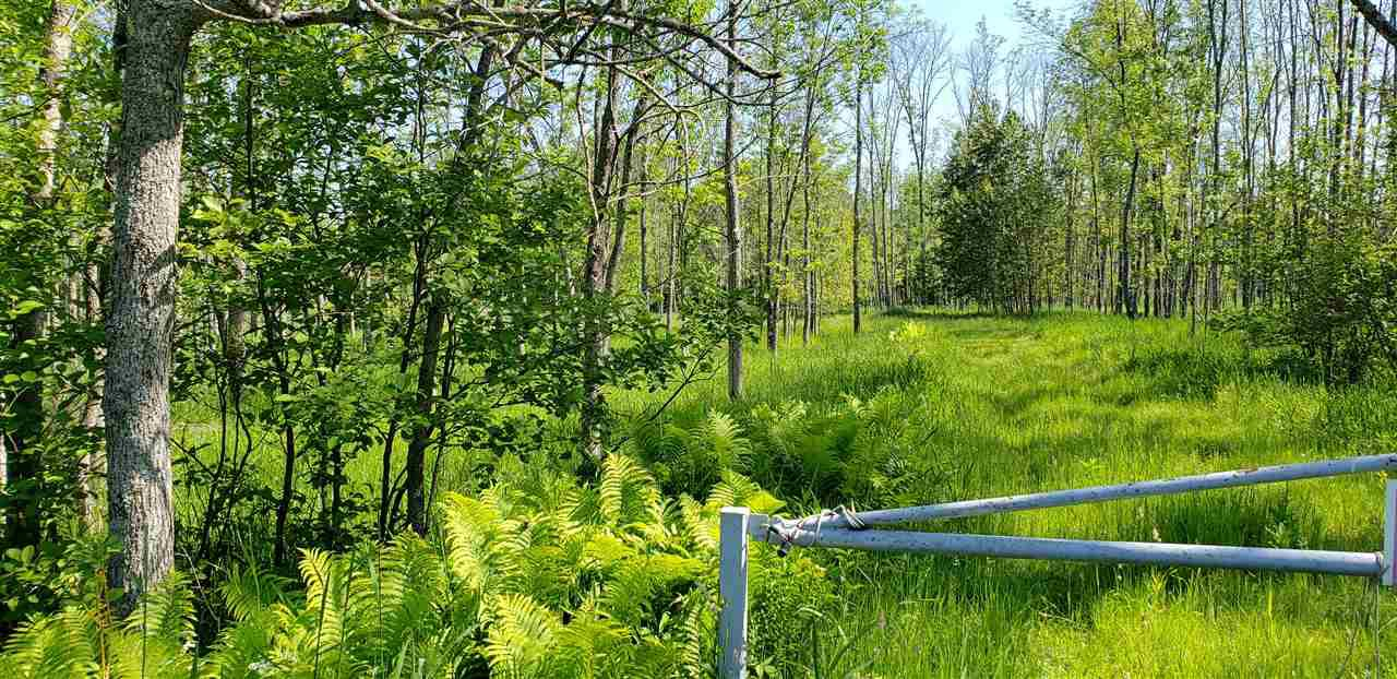 View Vacant Land For Sale at BIRCH CREEK ROAD, Menomonie, MI