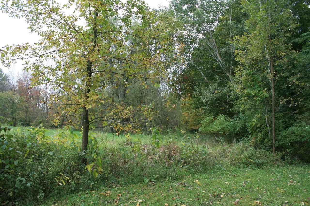 View Vacant Land For Sale at N620 County Road CC, Random Lake, WI