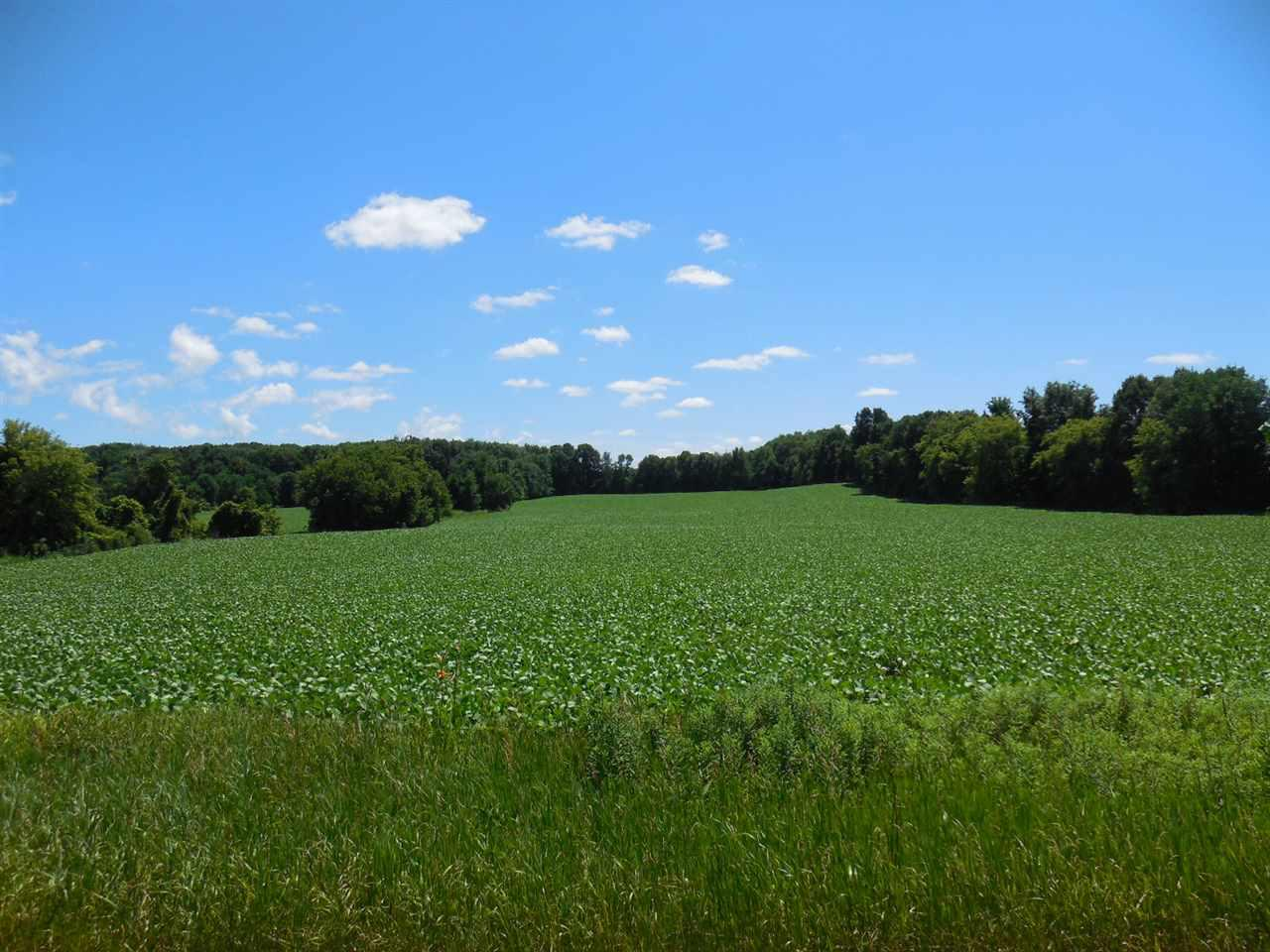 View Vacant Land For Sale at E2120 HILL ROAD, Luxemburg, WI