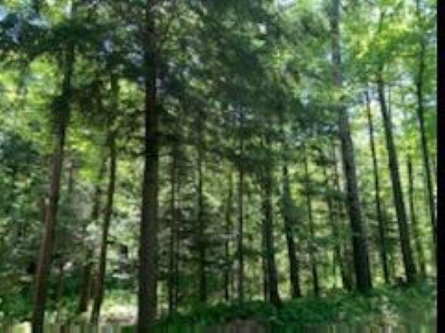 View Vacant Land For Sale at W4325 COPPER LAKE ROAD, Merrill, WI