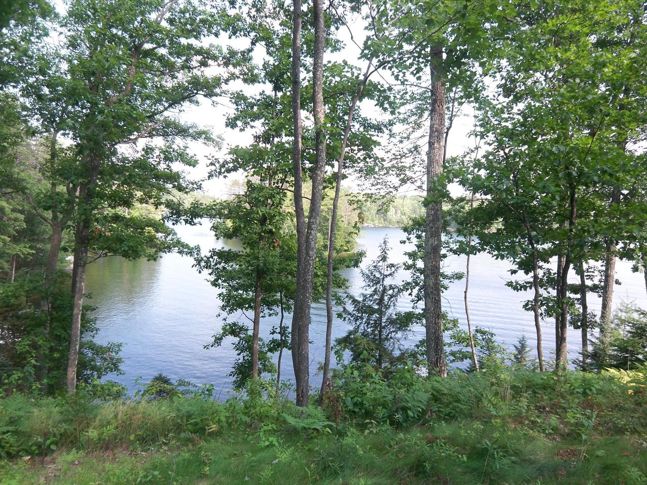 View Vacant Land For Sale at Lt0 Tall Pines Rd, Florence, WI