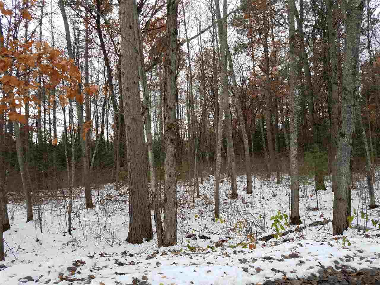 View Vacant Land For Sale at Lot 1 COTTAGE ROAD, Tomahawk, WI