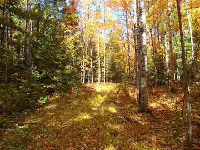 View Vacant Land For Sale at WONTOR ROAD, Amberg, WI