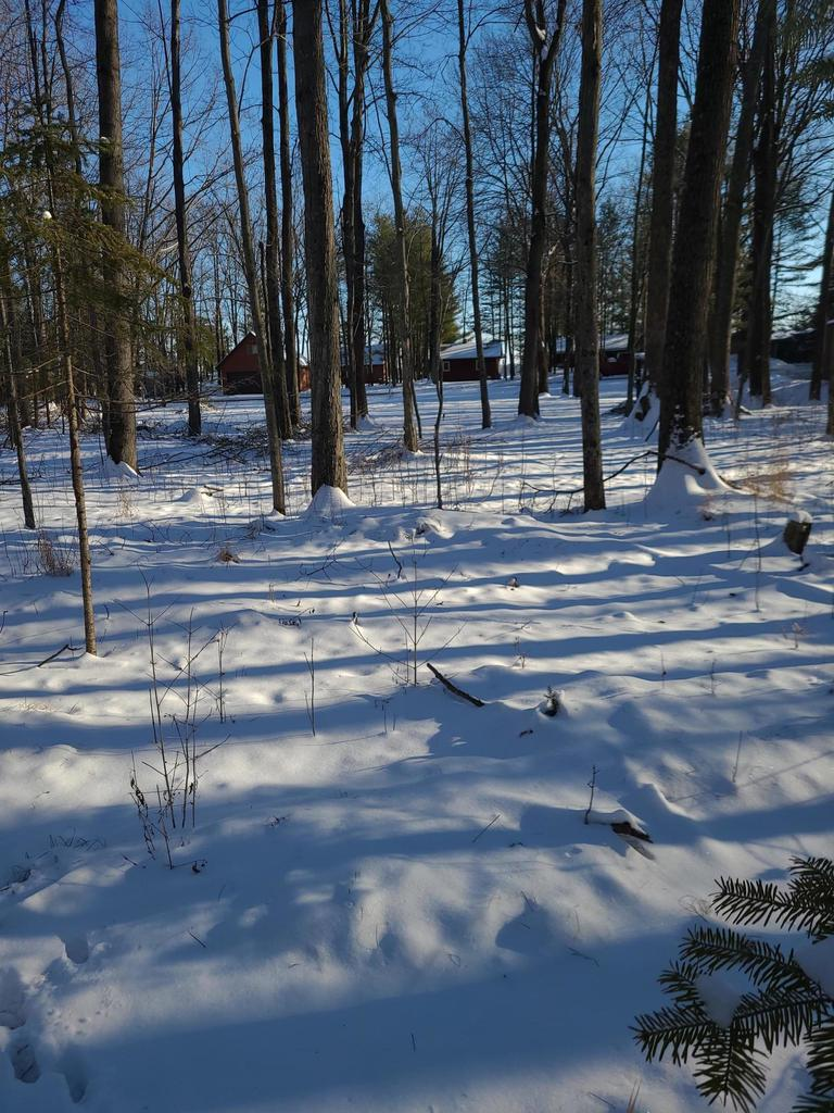 View Vacant Land For Sale at 9268 W Lake Dr, Pound, WI