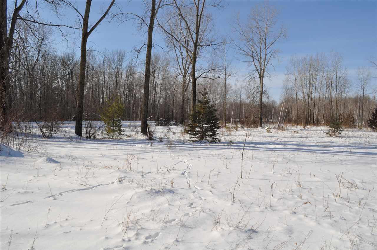 View Vacant Land For Sale at GEANO BEACH ROAD, Abrams, WI
