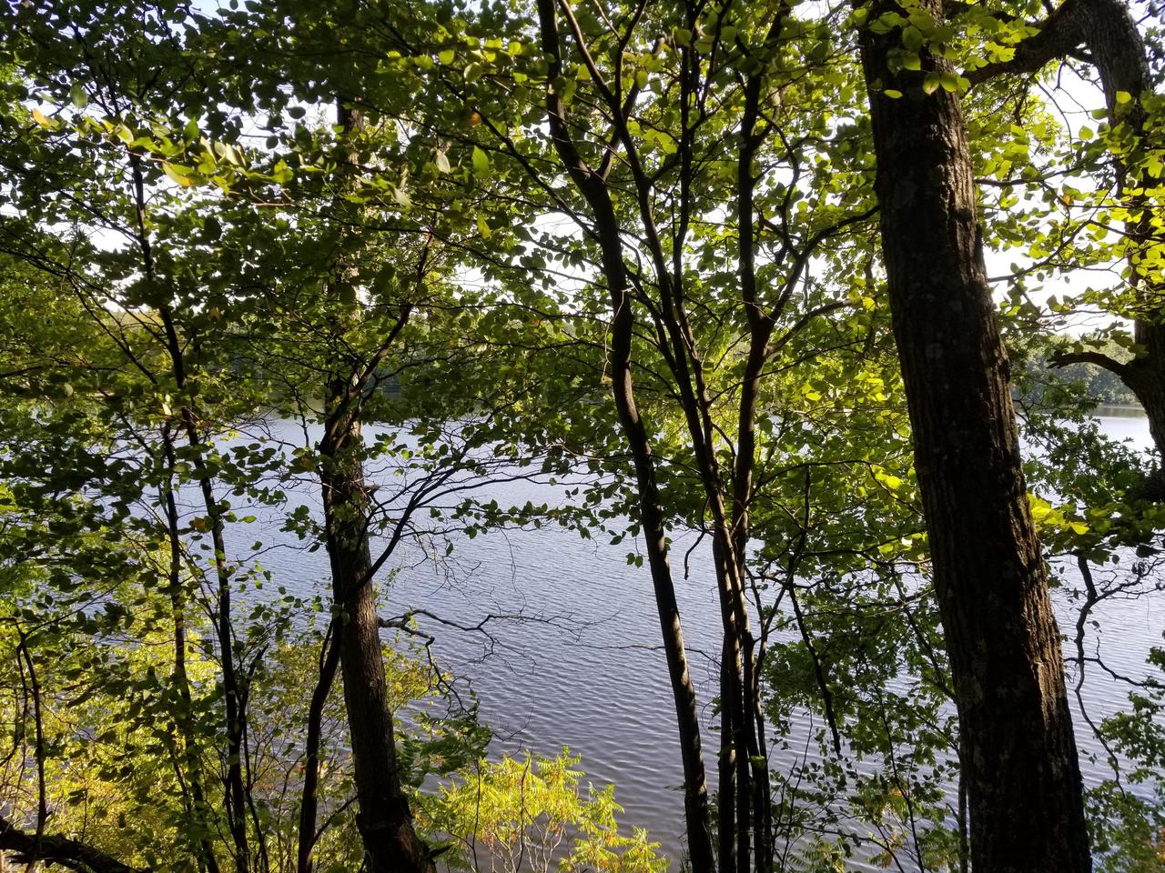 View Vacant Land For Sale at Lt 7 Hydro CT, Crivitz, WI