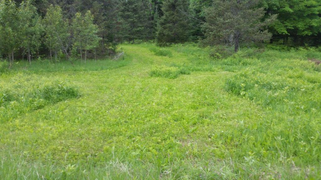 View Vacant Land For Sale at Cty Rd G-12, LAKE, MI