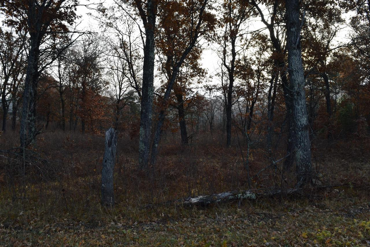 View Vacant Land For Sale at Lt26 Johnson Falls Rd, Crivitz, WI