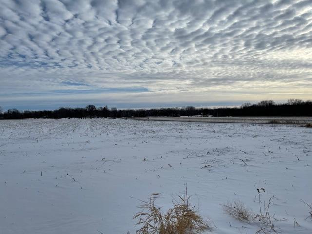 View Vacant Land For Sale at BALL PARK ROAD, Oconto Falls, WI