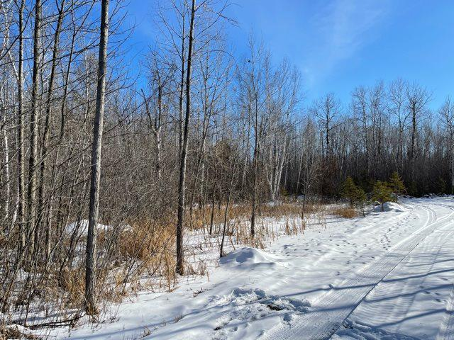 View Vacant Land For Sale at RED CEDAR ROAD, Oconto, WI