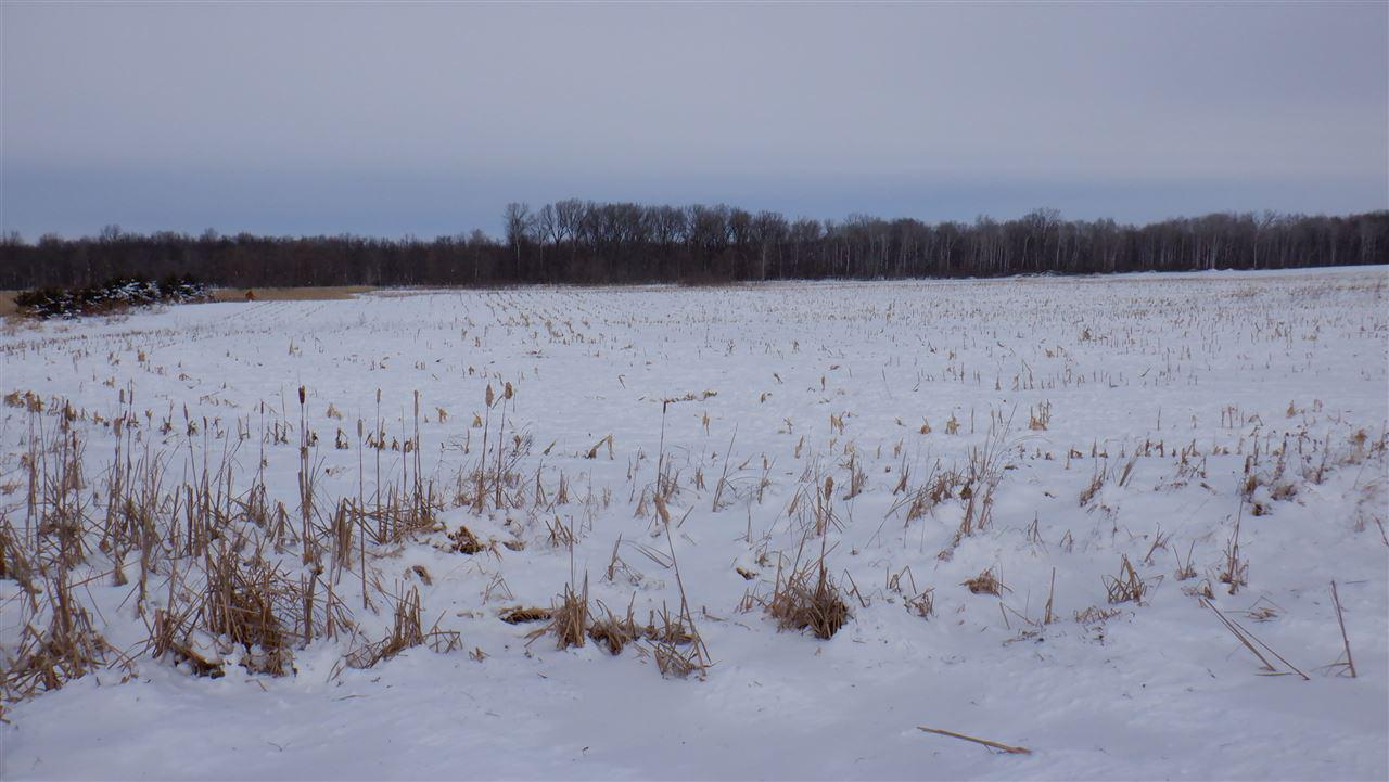View Vacant Land For Sale at FITZGERALD ROAD, New London, WI
