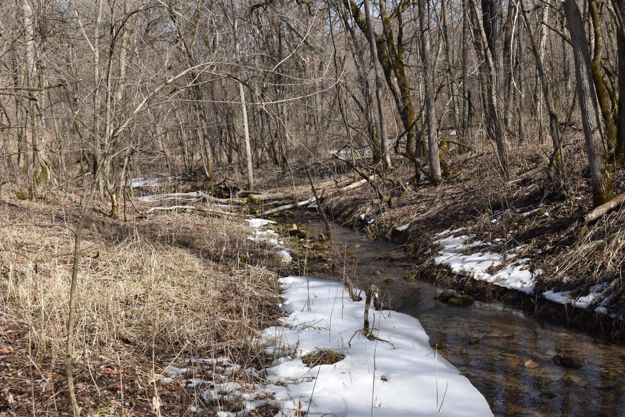 View Vacant Land For Sale at xxx 272nd St, Maiden Rock, WI