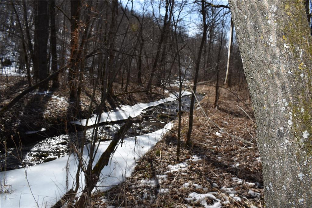 View Vacant Land For Sale at XXX 272nd Street, Maiden Rock, WI