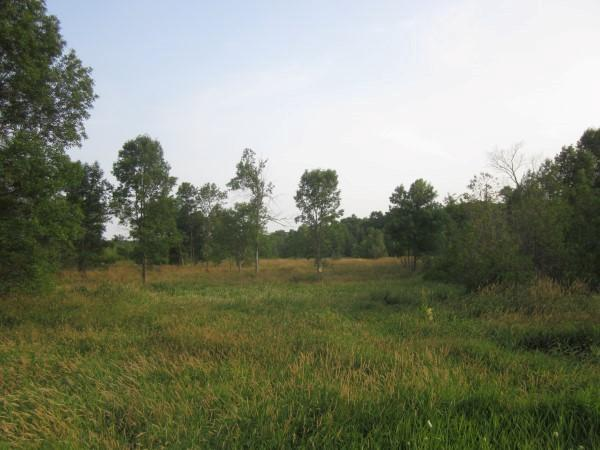 View Vacant Land For Sale at LT0 County Road I & SS, Random Lake, WI