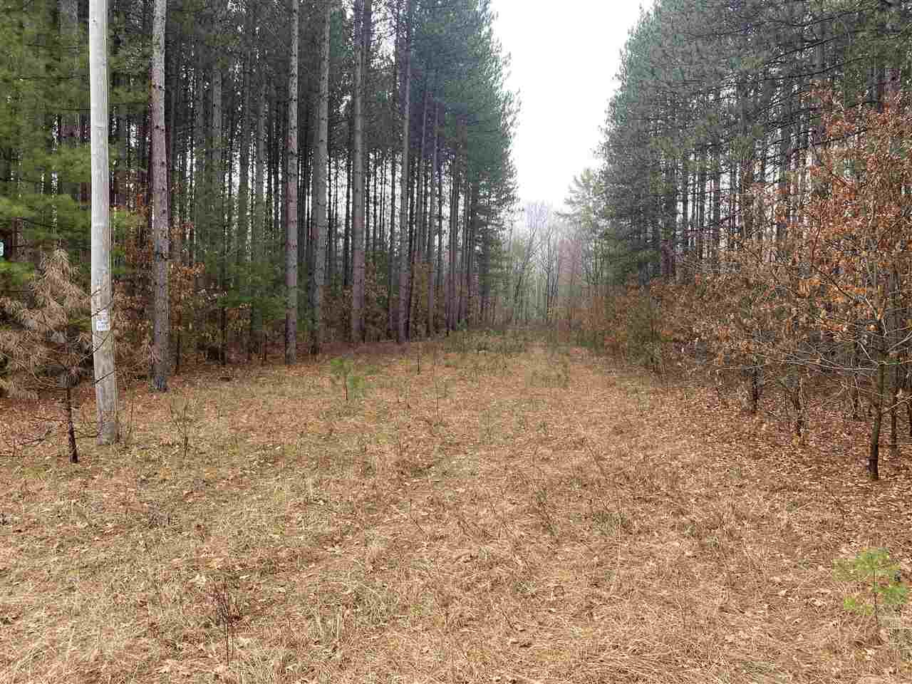 View Vacant Land For Sale at BACK ACRES ROAD, BEECHER, WI