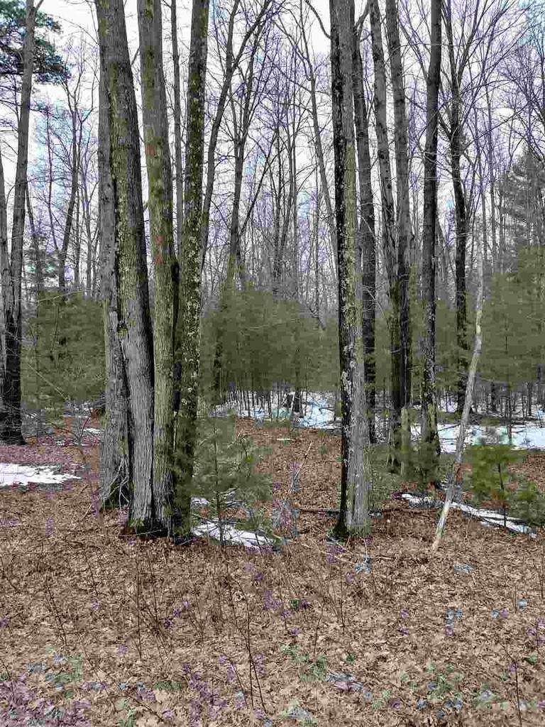 View Vacant Land For Sale at MAPLE HILL LANE, Marinette, WI