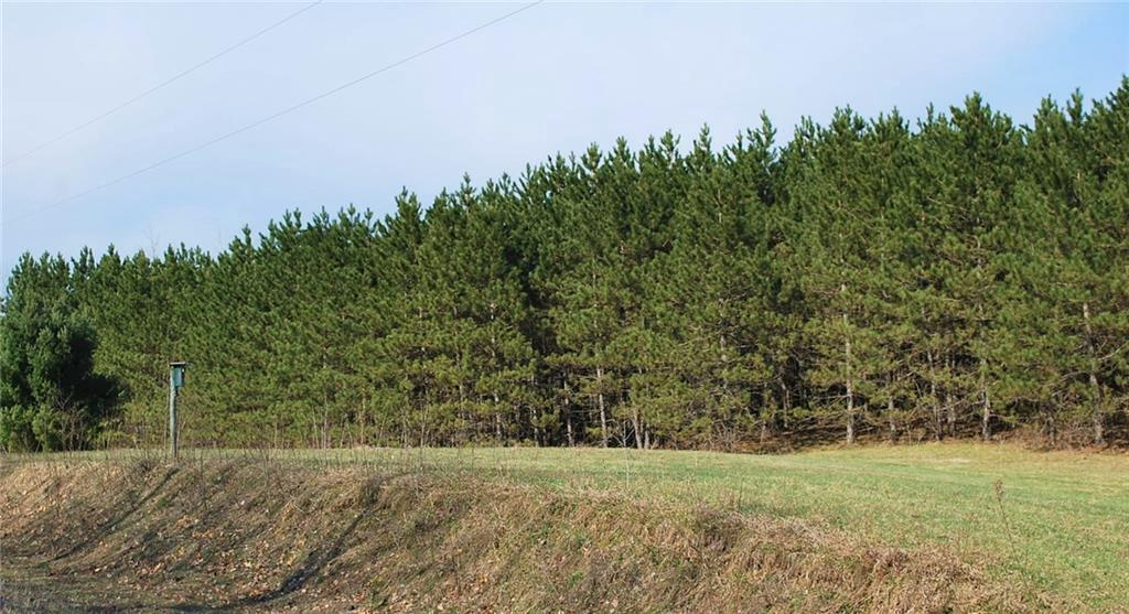 Lot 1 2.8 Acres on 280th Ave Avenue AVENUE, HOLCOMBE, WI 54745