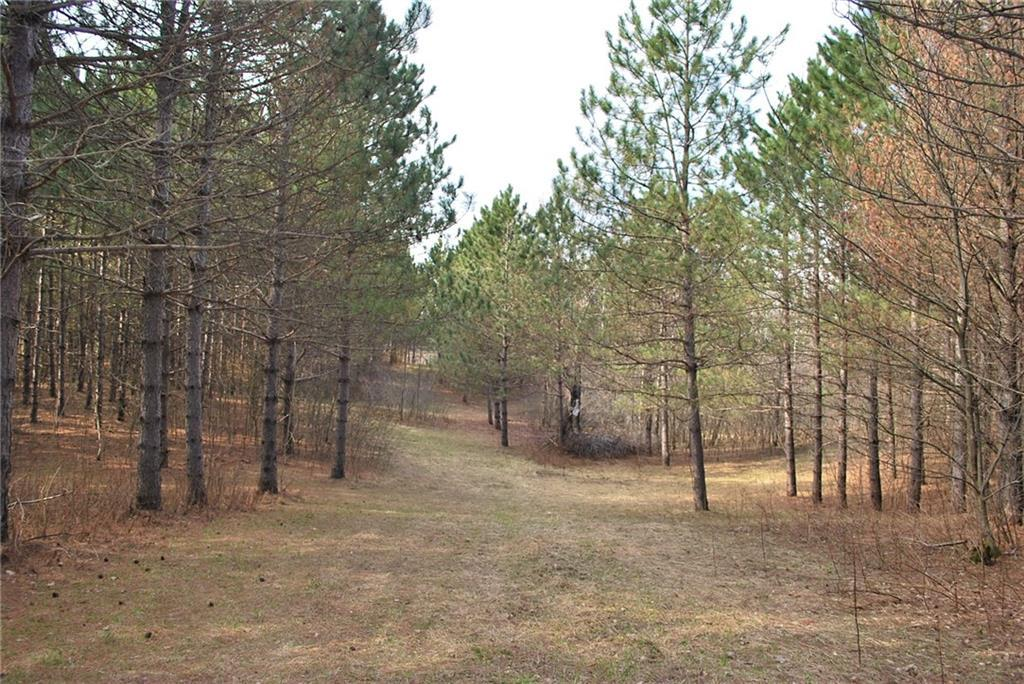 Lot 2 2.4 Acers on 280th Ave Avenue AVENUE, HOLCOMBE, WI 54745