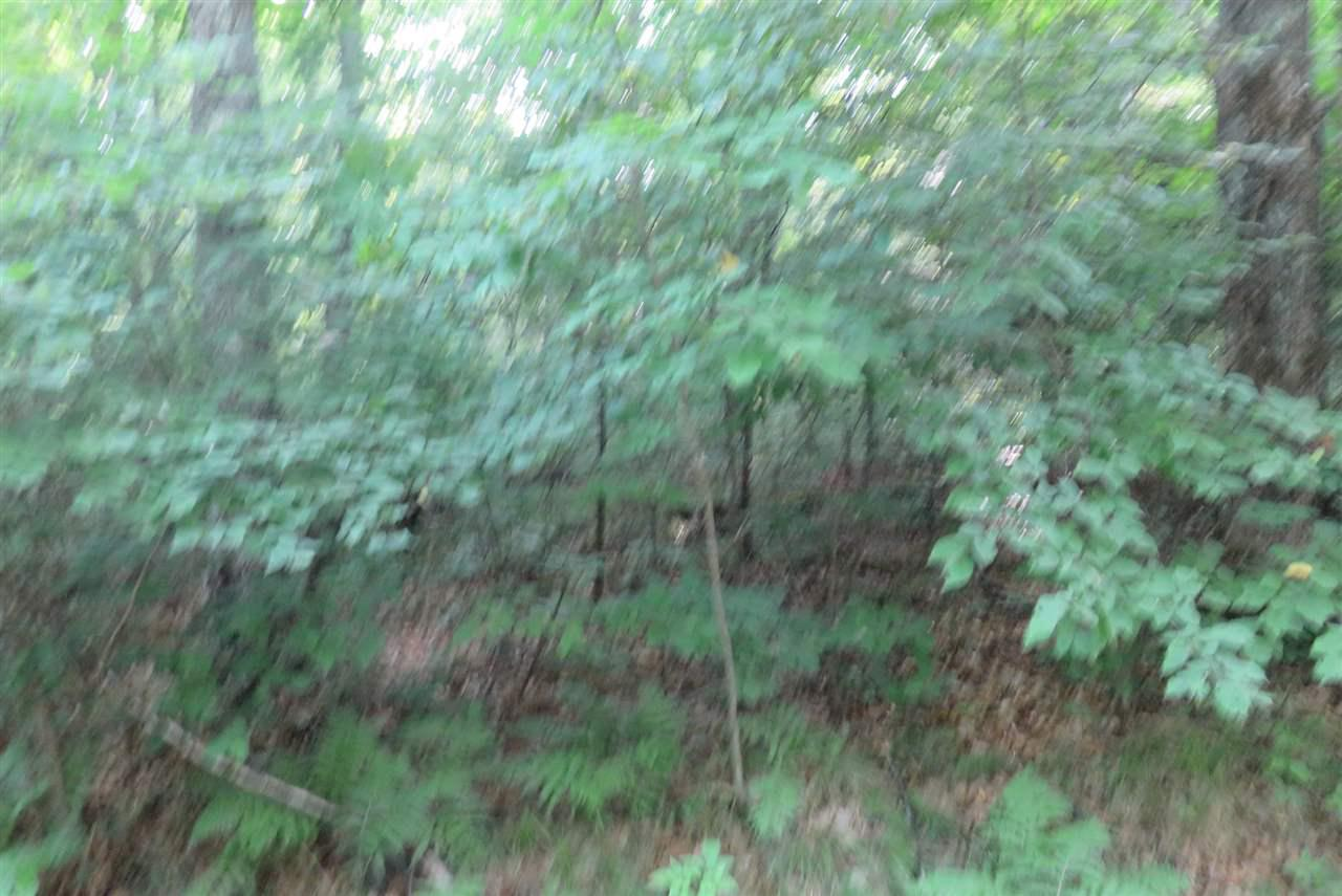COYOTE COURT COURT, POPPLE RIVER, WI 54542