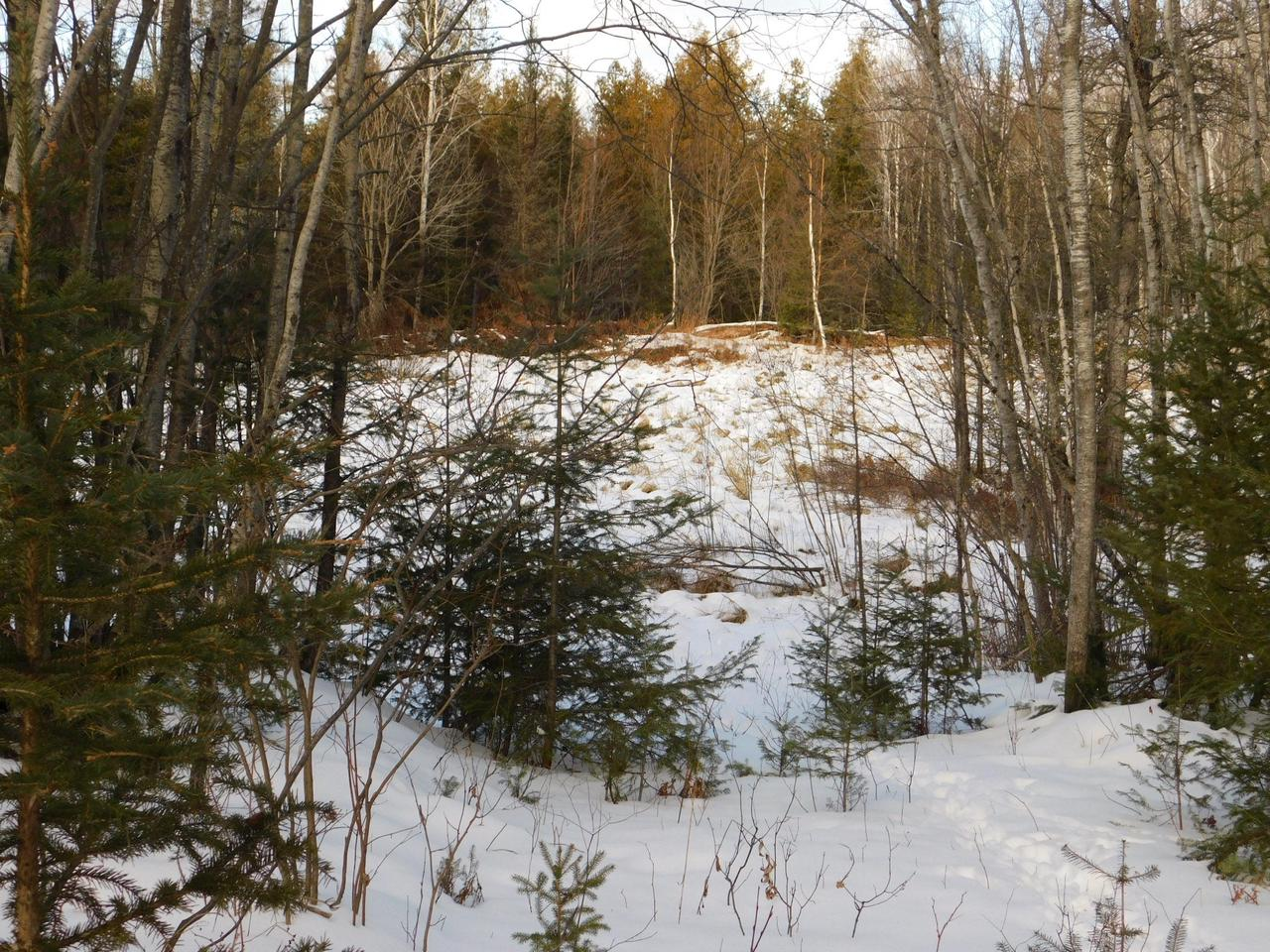11502 Highway 139, POPPLE RIVER, WI 54511